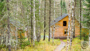 A Siberian weekend Dacha located deep in a birch forest.
