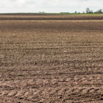 A ploughed field ready for seed.