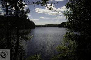 A lakeside view.