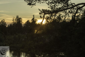 Sunset at Brokamala from our holiday Forest cabin.