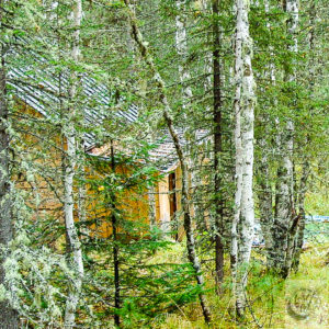 Our Siberian banya next to our dacha.