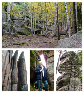 A collage of images from my hike in the Siberian hills.