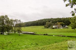 The Österlen (Sweden) country side.