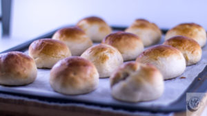 Semlor buns, fresh out of the oven.